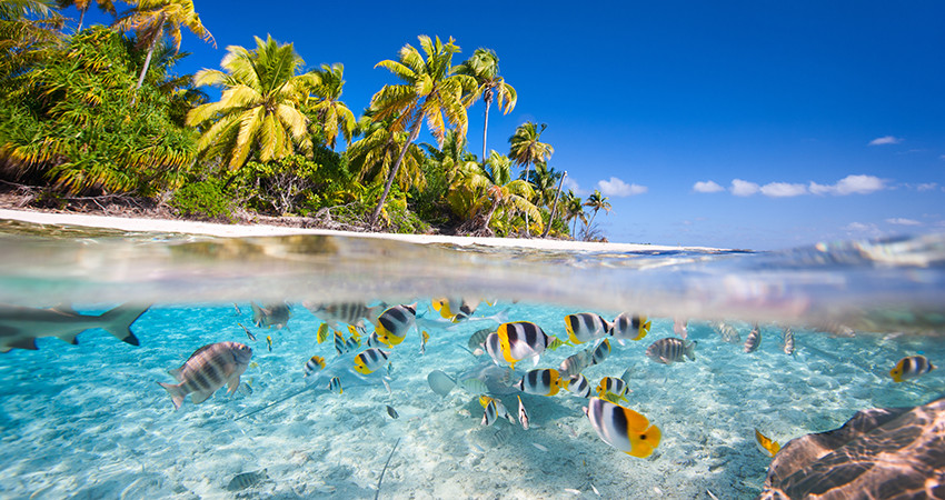 caraibe, insulele virgine, puerto rico, zbor ieftin, diy, travelator.ro