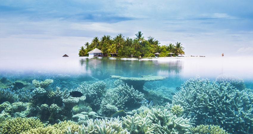 zbor ieftin, maldive, travelator.ro, diy, pont