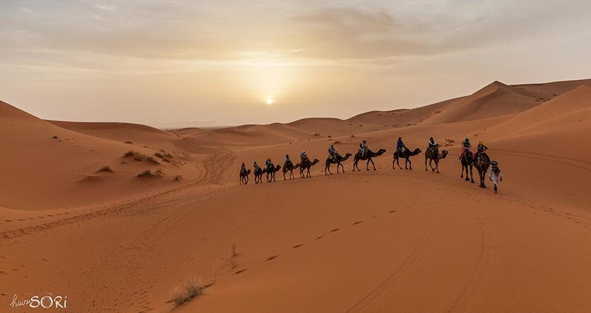 sori tigaeru, haicusori.com, travelator.ro, calatorii, ponturi vacanta, jurnal de calatorie, maroc. morocco